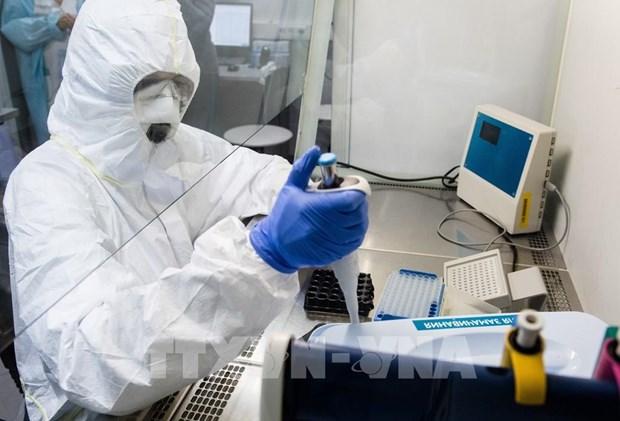 Prensa internacional aprecia esfuerzos de Vietnam por salvar a paciente del coronavirus hinh anh 1