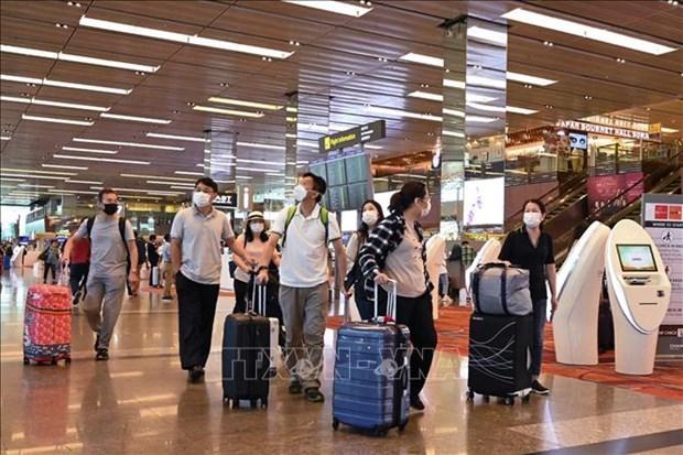 Permitira Singapur transito de pasajeros en aeropuerto de Changi hinh anh 1