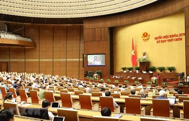 Parlamento de Vietnam debate proyecto de leyes de Guardiafronteriza y Empresarial hinh anh 1