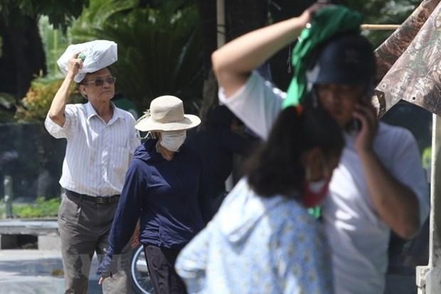 Reiteran atencion del Gobierno vietnamita a pronostico meteorologico hinh anh 1