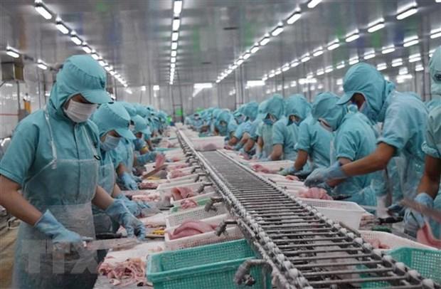 Diario japones resalta impactos positivos del EVFTA para empresas de otros paises hinh anh 1