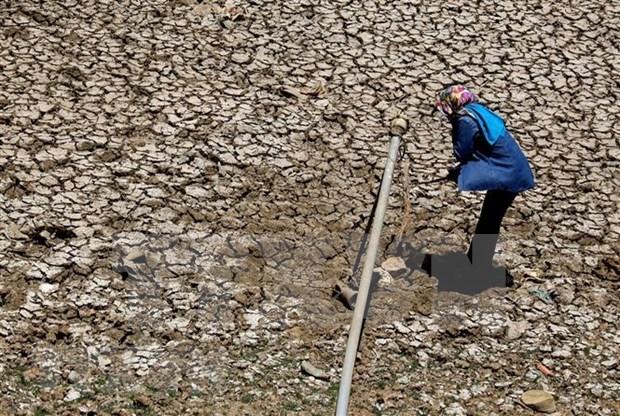 Vietnam enfrenta clima calido severo hinh anh 1
