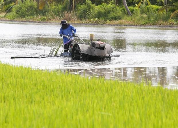 Tailandia determina tres motores clave para la recuperacion economica hinh anh 1