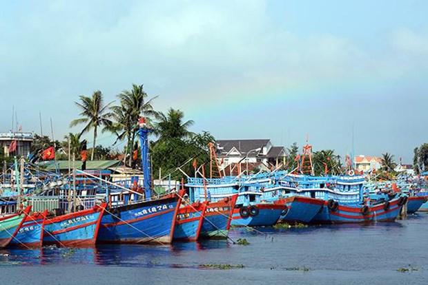 Elaboran planificacion del sistema de puertos de pesca en Vietnam hinh anh 1