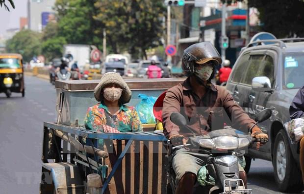Camboya aprueba cinco proyectos de crear empleos para los locales hinh anh 1