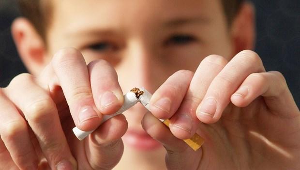 Lanzan en Vietnam concurso online sobre prevencion del consumo de tabaco hinh anh 1