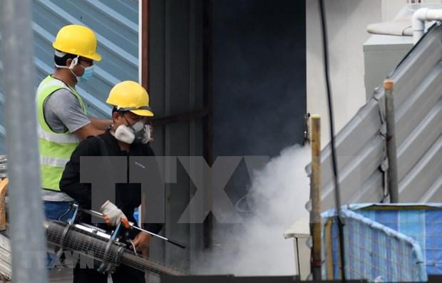 Provincia de Tailandia enfrenta brote de dengue hinh anh 1