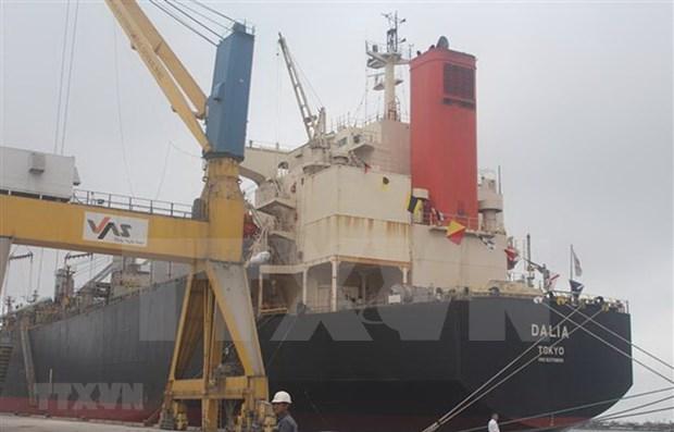 Aumenta volumen de carga a traves de puertos maritimos de Vinalines hinh anh 1