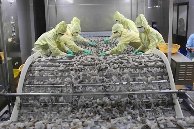 Alcanza Vietnam superavit comercial en los primeros cinco meses del ano hinh anh 1