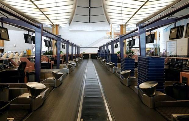 Facilitan viajes esenciales entre Singapur y China por fines comerciales y oficiales hinh anh 1