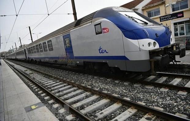Vicepremier vietnamita insta a acelerar estudio de prefactibilidad del proyecto ferroviario Norte-Sur hinh anh 1