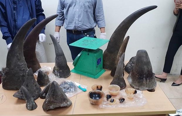 Condenan a cinco anos de prision a traficante vietnamita de cuernos de rinoceronte hinh anh 1