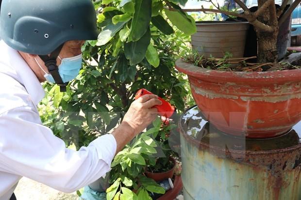 Ciudad Ho Chi Minh advierte sobre el brote de dengue en la temporada de lluvias hinh anh 1