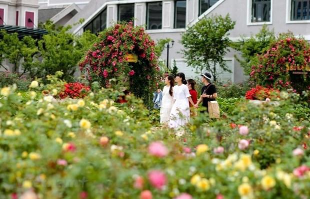 Encuesta muestra perspectivas favorables del turismo nacional de Vietnam hinh anh 1