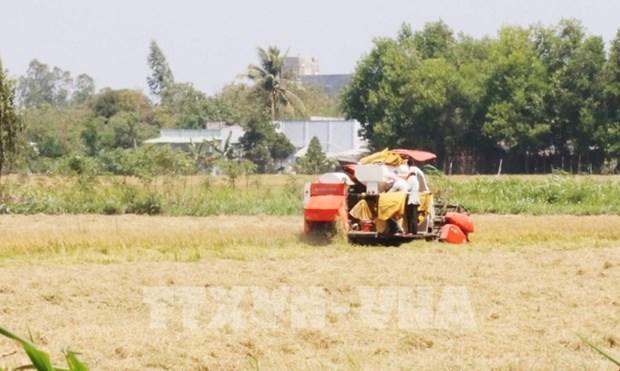 Vietnam por acelerar la mecanizacion de la agricultura e industria de procesamiento hinh anh 1