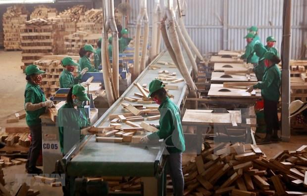 Ciudad Ho Chi Minh recauda fondo multimillonario de capital foraneo en cinco meses hinh anh 1