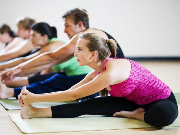 Celebraran en Hanoi Dia Internacional del Yoga hinh anh 1