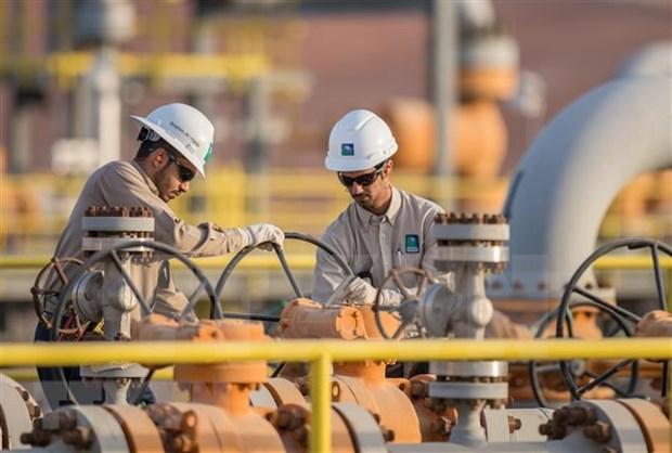 Empresa saudi se retira del proyecto de refineria de petroleo en Indonesia hinh anh 1