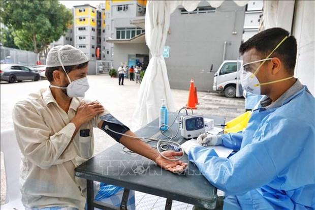 COVID-19: Singapur registra alta tasa de nuevas infecciones asintomaticas hinh anh 1