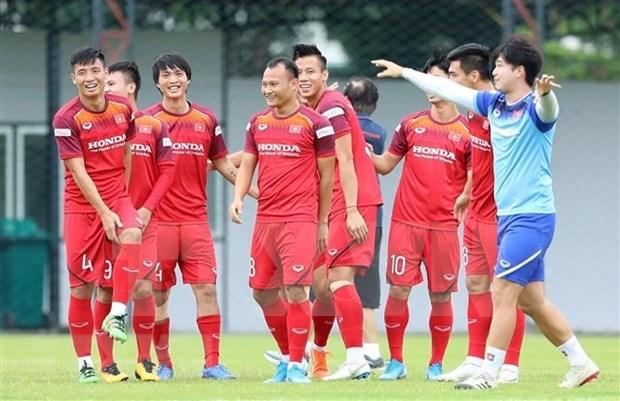 Futbol: Vietnam y Malasia disputaran eliminatoria mundialista en octubre proximo hinh anh 1