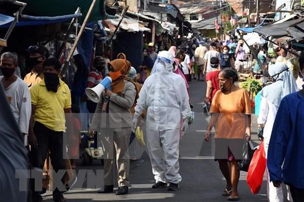 Reanudan actividades de negocios y transporte en Yakarta hinh anh 1