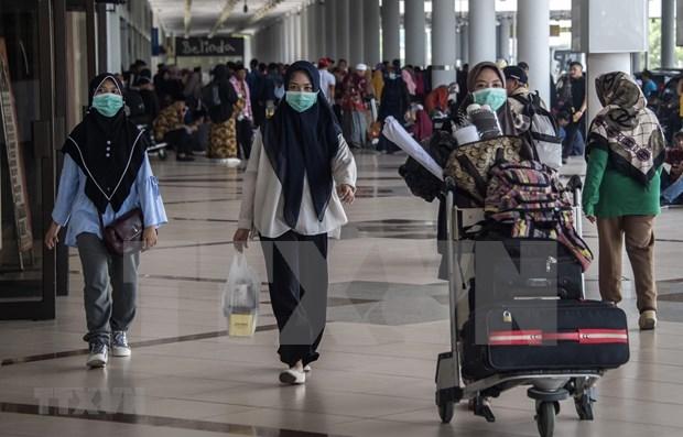 Indonesia adopta normas sobre transporte de pasajeros nacionales e internacionales hinh anh 1