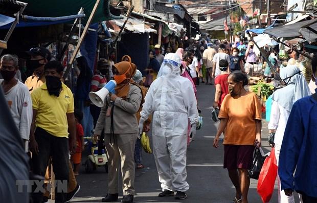 Indonesia planea recuperar economia y sistema financiero islamico hinh anh 1