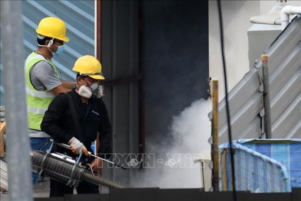 Aumentan repentinamente a mas de 10 mil los casos de dengue en Singapur hinh anh 1