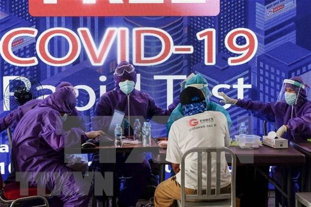 Impulsa Indonesia cooperacion internacional en tema del COVID-19 hinh anh 1