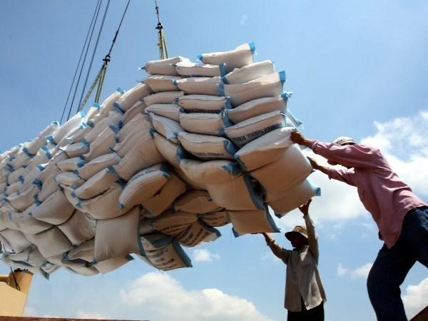 Camboya exporta casi un millon de toneladas de arroz a Vietnam hinh anh 1