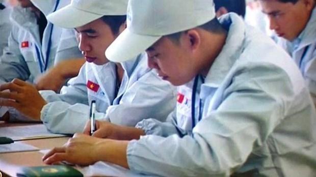 Apoya OIT a Vietnam en la promocion de migracion laboral segura hinh anh 1