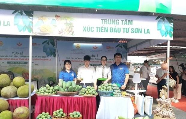 Estimulan en Hanoi consumo domestico de productos agricolas y frutales hinh anh 1