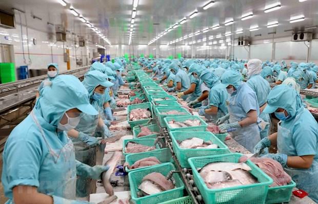 Exportaciones acuaticas de Vietnam disminuyen debido al COVID-19 hinh anh 1