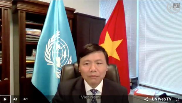 Vietnam e Indonesia piden resolver causas profundas de inestabilidad en Africa Central hinh anh 1