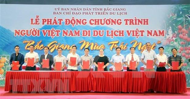 """Inauguran campana """"Vietnamitas viajan por Vietnam"""" en provincia de Bac Giang hinh anh 1"""