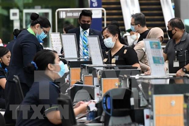 Viajeros a Singapur deberan pagar las pruebas de COVID-19 hinh anh 1