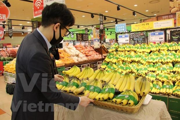 Platano vietnamita llega a cadena de supermercados sudcoreana Lotte hinh anh 1