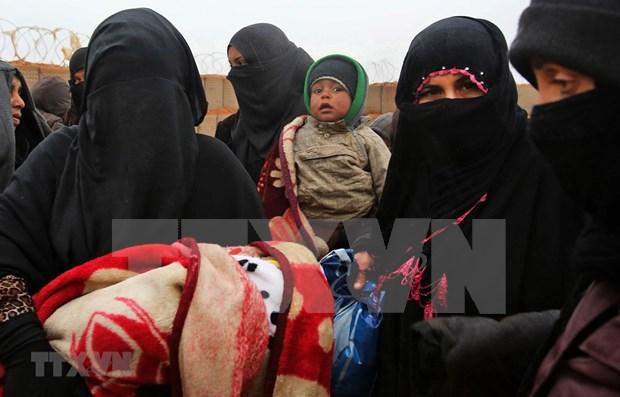 Vietnam pide mayor asistencia humanitaria a Siria hinh anh 1