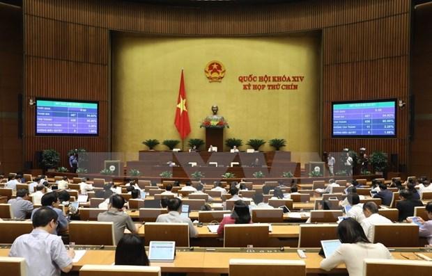Parlamento de Vietnam aprueba Ley de Inversion enmendada hinh anh 1