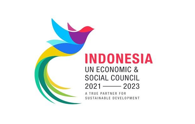 Elegida Indonesia como miembro de ECOSOC hinh anh 1