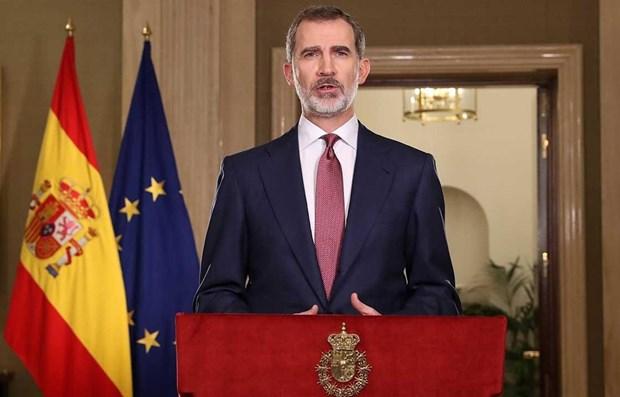 Rey de Espana alaba logros de Vietnam hinh anh 1