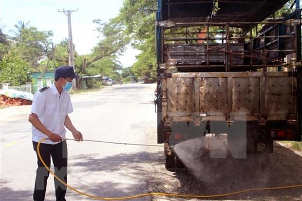Ocho empresas vietnamitas elegibles para importar cerdos de Tailandia hinh anh 1