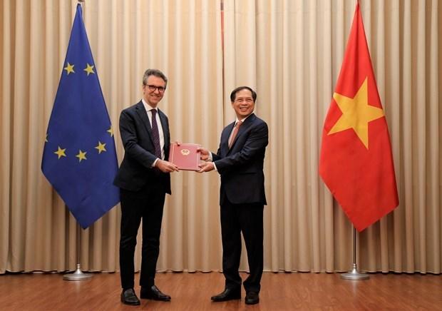 Vietnam entrega a la UE notas diplomaticas sobre ratificacion del EVFTA y EVIPA hinh anh 1