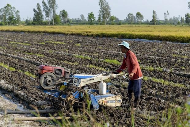 Necesidad urgente para la modificacion de la legislacion fiscal sobre fertilizantes hinh anh 1