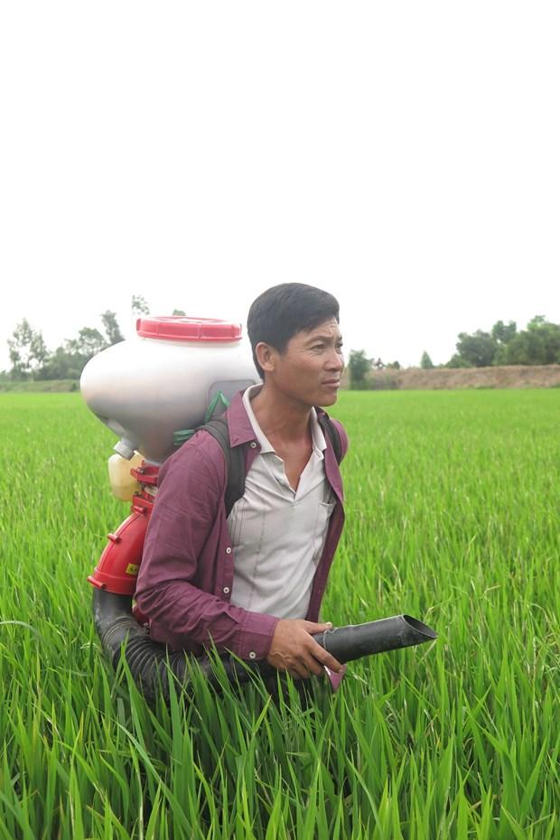 Necesidad urgente para la modificacion de la legislacion fiscal sobre fertilizantes hinh anh 2