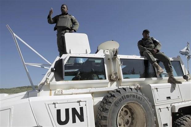 Consejo de Seguridad de la ONU revisa la prorroga de misiones de la FNUOS hinh anh 1