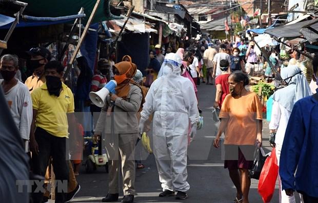Indonesia registra mayor numero de nuevas infecciones del COVID-19 en un dia hinh anh 1