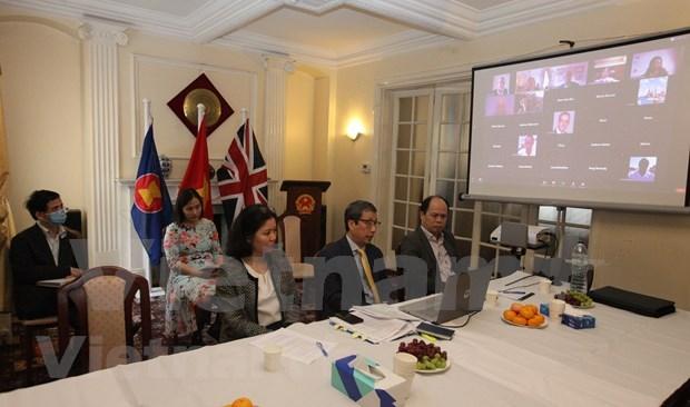 Organizacion britanica explora oportunidad de inversiones en Vietnam tras COVID-19 hinh anh 1