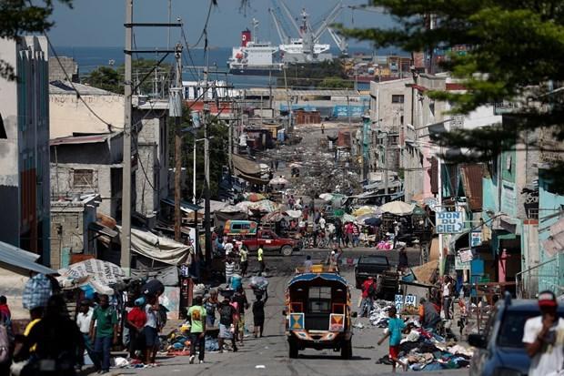 Respaldan Vietnam e Indonesia reforma constitucional de Haiti hinh anh 1