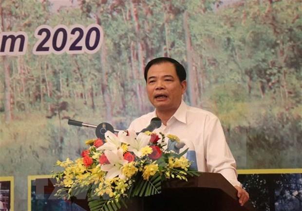 Buscan mejorar gestion y proteccion forestal en Altiplanicie Occidental de Vietnam hinh anh 1